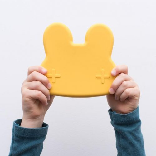 We_Might_Be_Tiny_-_bunny_snackie_-_holding_yellow_590x